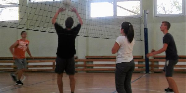 sport – siatkówka